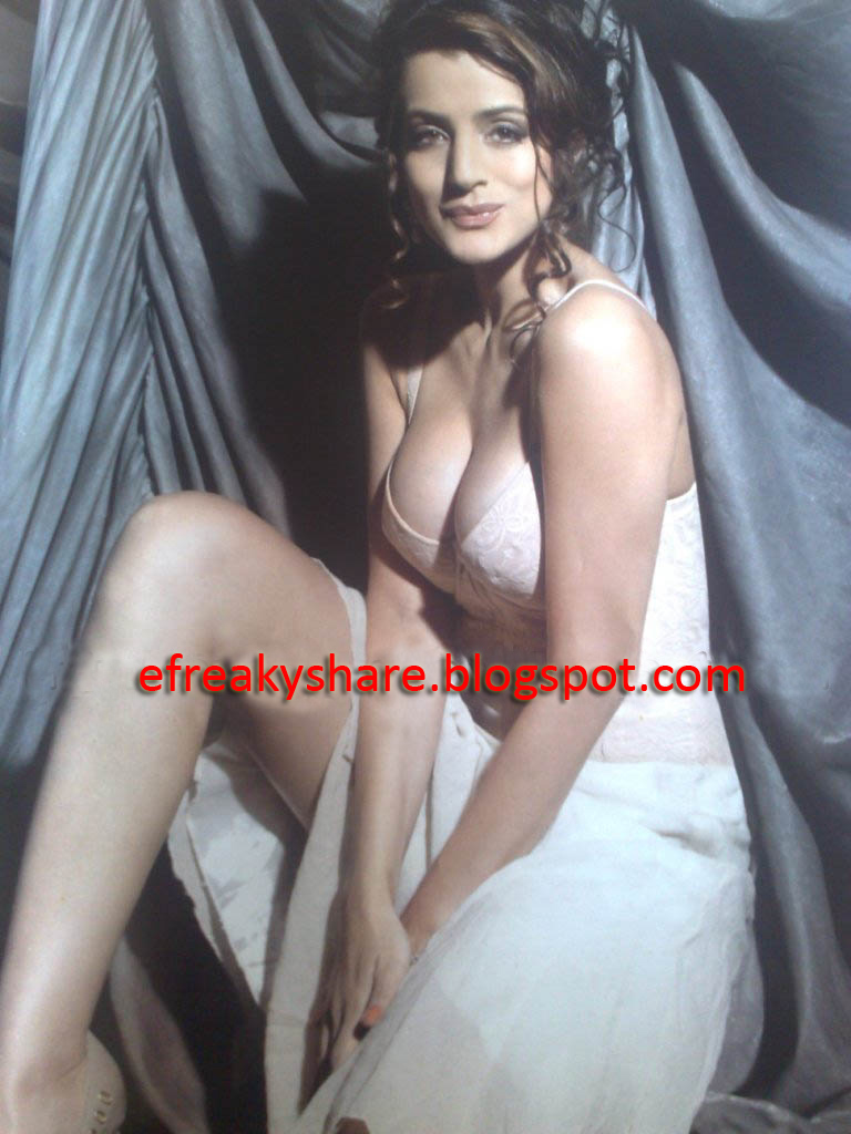 Seems very Hot amisha patel cleavage